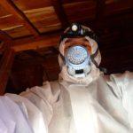 ハクビシン糞回収・断熱材交換・消臭除菌剤散布! 2020年3月25日 富山県南砺市